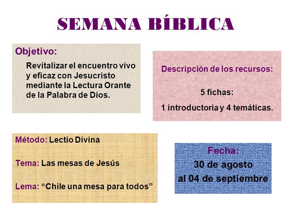 SEMANA BÍBLICA Descripción de los recursos: 5 fichas: 1 introductoria y 4 temáticas. Objetivo: Revitalizar el encuentro vivo y eficaz con Jesucristo m