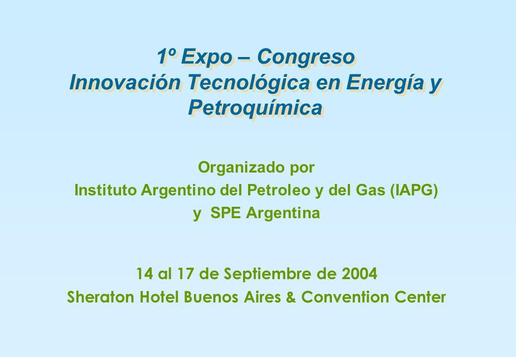 1º Expo – Congreso Innovación Tecnológica en Energía y Petroquímica Organizado por Instituto Argentino del Petroleo y del Gas (IAPG) y SPE Argentina 14 al 17 de Septiembre de 2004 Sheraton Hotel Buenos Aires & Convention Center