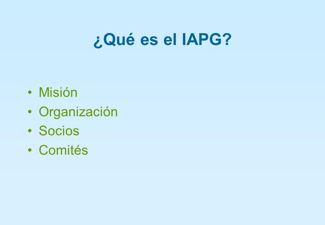 Comisión de Innovación Tecnológica del IAPG Metas Encuentro de la Oferta y la Demanda Premio Repsol YPF