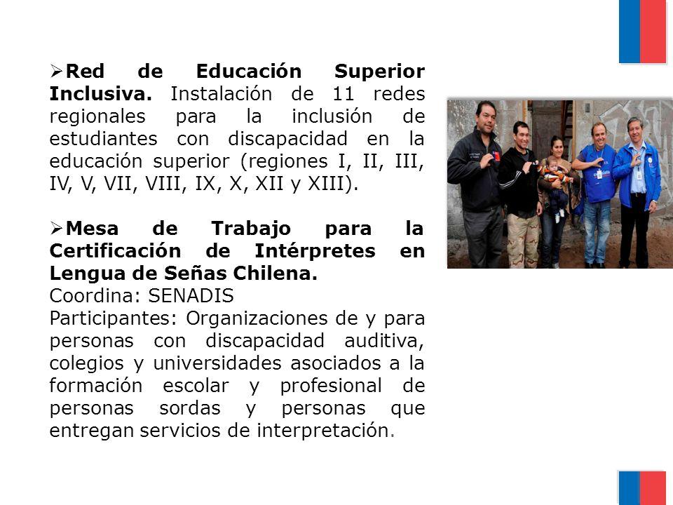 Red de Educación Superior Inclusiva. Instalación de 11 redes regionales para la inclusión de estudiantes con discapacidad en la educación superior (re