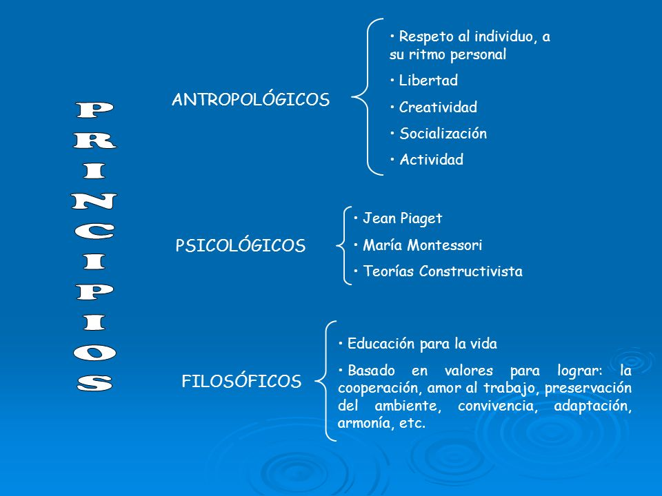 ANTROPOLÓGICOS PSICOLÓGICOS FILOSÓFICOS Respeto al individuo, a su ritmo personal Libertad Creatividad Socialización Actividad Jean Piaget María Monte