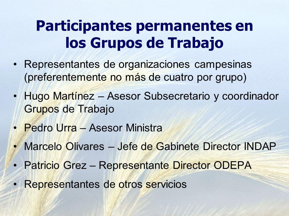 Participantes permanentes en los Grupos de Trabajo Representantes de organizaciones campesinas (preferentemente no más de cuatro por grupo) Hugo Martí
