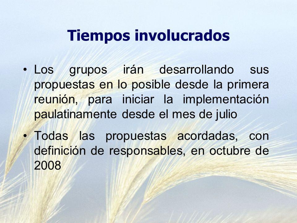 Tiempos involucrados Los grupos irán desarrollando sus propuestas en lo posible desde la primera reunión, para iniciar la implementación paulatinamente desde el mes de julio Todas las propuestas acordadas, con definición de responsables, en octubre de 2008