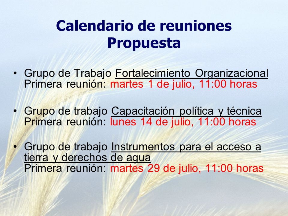 Calendario de reuniones Propuesta Grupo de Trabajo Fortalecimiento Organizacional Primera reunión: martes 1 de julio, 11:00 horas Grupo de trabajo Cap