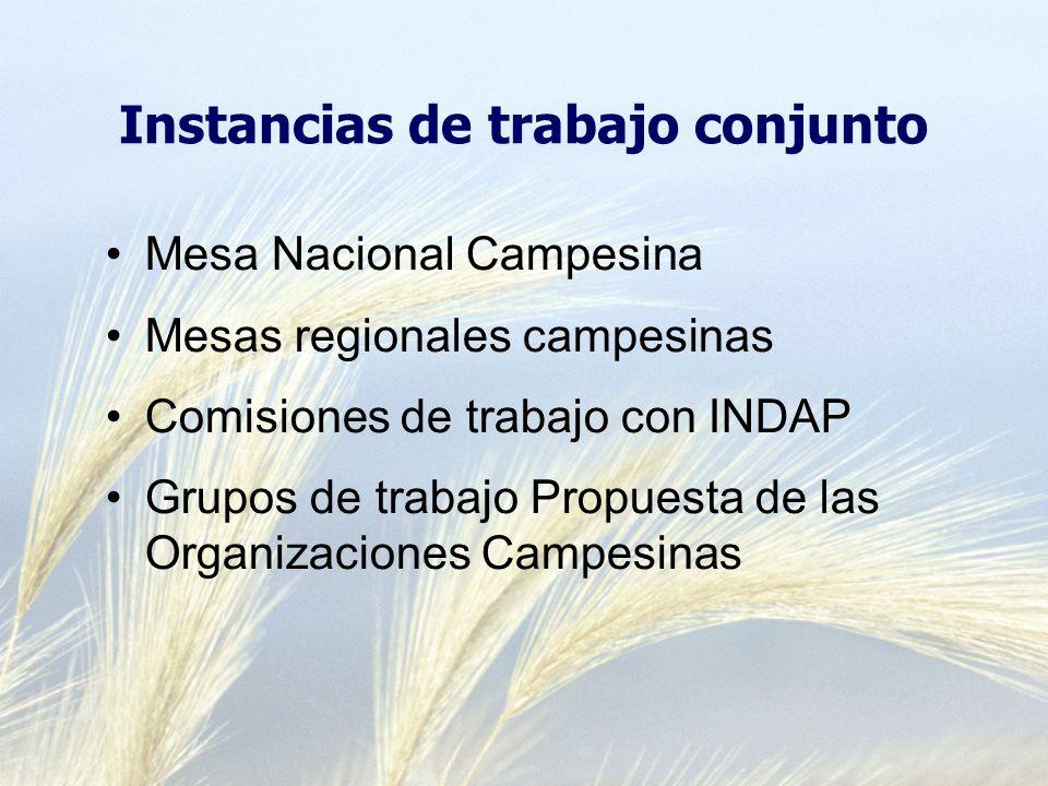 Instancias de trabajo conjunto Mesa Nacional Campesina Mesas regionales campesinas Comisiones de trabajo con INDAP Grupos de trabajo Propuesta de las