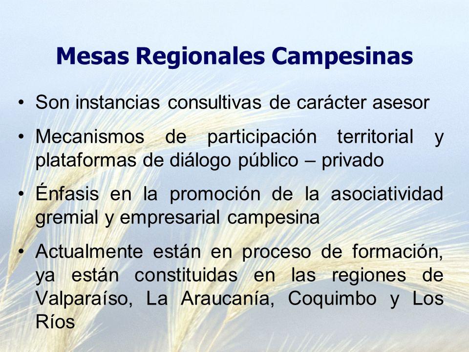 Mesas Regionales Campesinas Son instancias consultivas de carácter asesor Mecanismos de participación territorial y plataformas de diálogo público – p