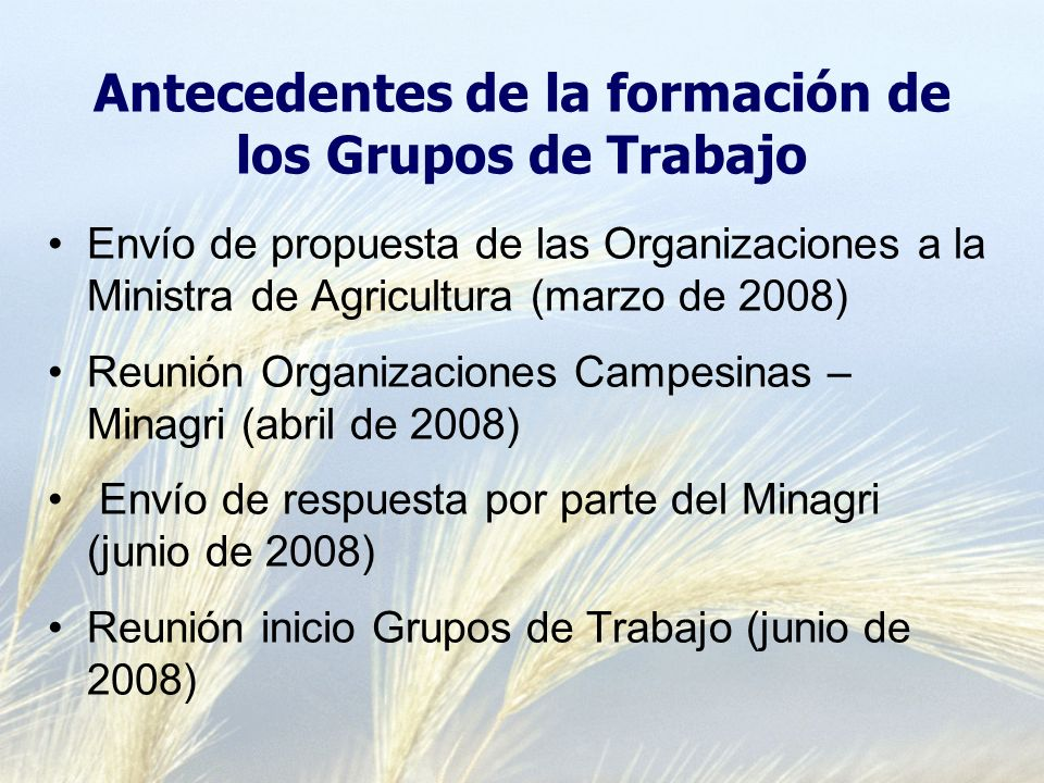 Antecedentes de la formación de los Grupos de Trabajo Envío de propuesta de las Organizaciones a la Ministra de Agricultura (marzo de 2008) Reunión Organizaciones Campesinas – Minagri (abril de 2008) Envío de respuesta por parte del Minagri (junio de 2008) Reunión inicio Grupos de Trabajo (junio de 2008)