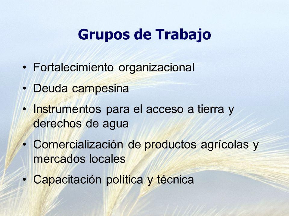 Grupos de Trabajo Fortalecimiento organizacional Deuda campesina Instrumentos para el acceso a tierra y derechos de agua Comercialización de productos agrícolas y mercados locales Capacitación política y técnica