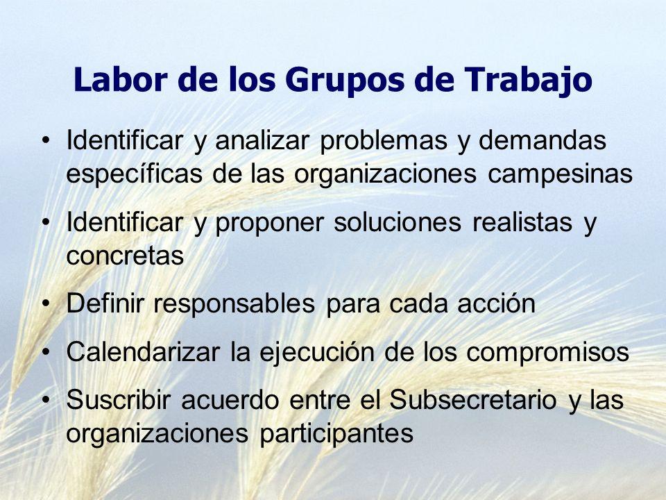 Labor de los Grupos de Trabajo Identificar y analizar problemas y demandas específicas de las organizaciones campesinas Identificar y proponer solucio
