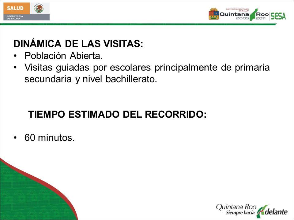 DINÁMICA DE LAS VISITAS: Población Abierta. Visitas guiadas por escolares principalmente de primaria secundaria y nivel bachillerato. TIEMPO ESTIMADO