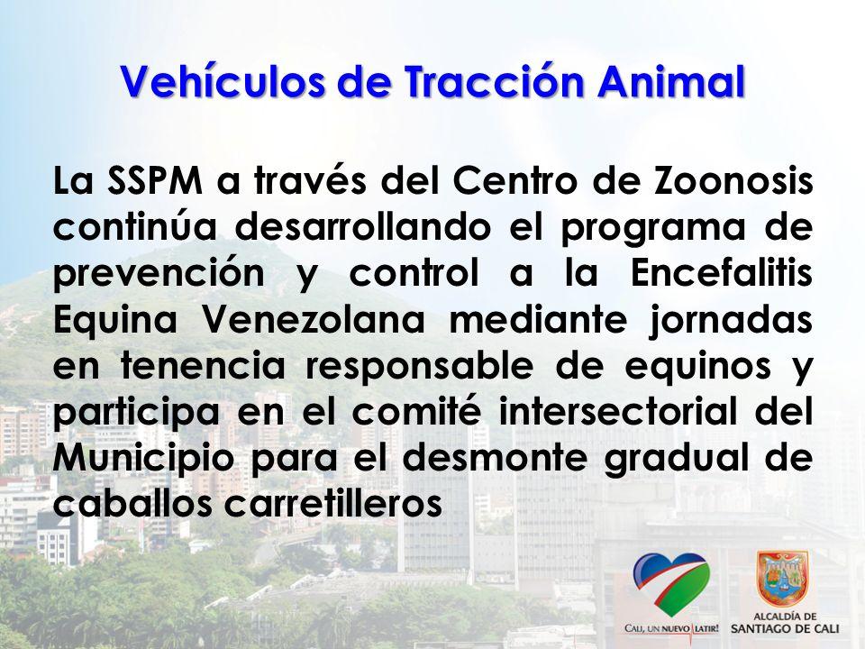 Vehículos de Tracción Animal La SSPM a través del Centro de Zoonosis continúa desarrollando el programa de prevención y control a la Encefalitis Equin