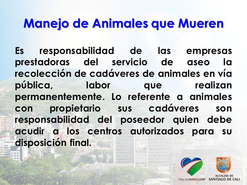 Manejo de Animales que Mueren Es responsabilidad de las empresas prestadoras del servicio de aseo la recolección de cadáveres de animales en vía públi