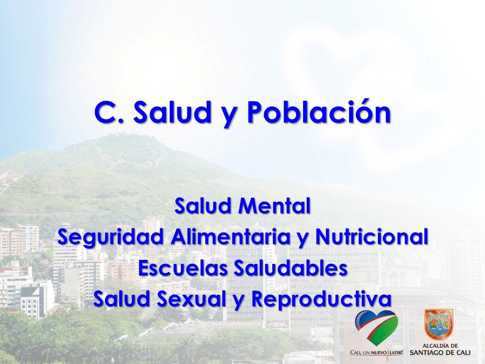 C. Salud y Población Salud Mental Seguridad Alimentaria y Nutricional Escuelas Saludables Salud Sexual y Reproductiva