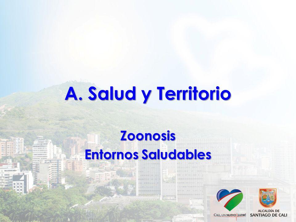 Secretaría de Salud Pública Municipal GRACIAS