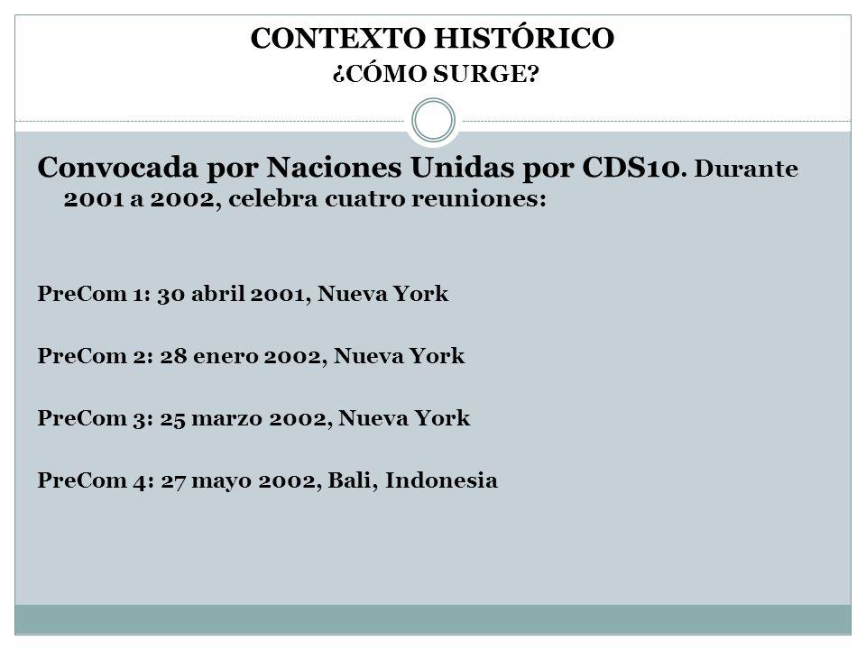 CONTEXTO HISTÓRICO ¿CÓMO SURGE.Convocada por Naciones Unidas por CDS10.