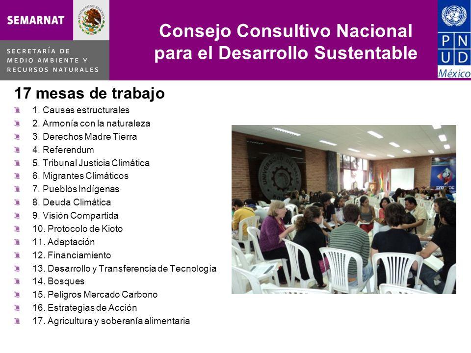 Consejo Consultivo Nacional para el Desarrollo Sustentable 17 mesas de trabajo 1. Causas estructurales 2. Armonía con la naturaleza 3. Derechos Madre