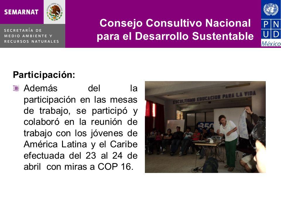 Participación: Además del la participación en las mesas de trabajo, se participó y colaboró en la reunión de trabajo con los jóvenes de América Latina