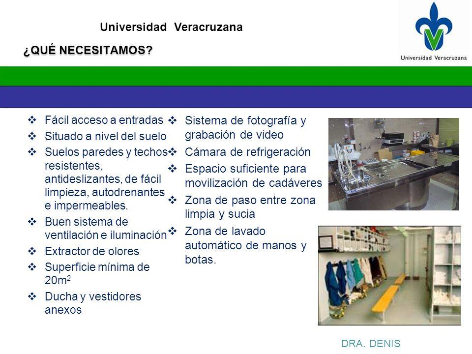 Universidad Veracruzana ¿QUÉ NECESITAMOS? Fácil acceso a entradas Situado a nivel del suelo Suelos paredes y techos resistentes, antideslizantes, de f