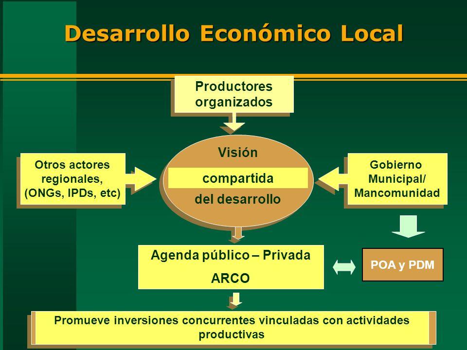 Gobierno Municipal/ Mancomunidad Gobierno Municipal/ Mancomunidad Desarrollo Económico Local Otros actores regionales, (ONGs, IPDs, etc) Productores o