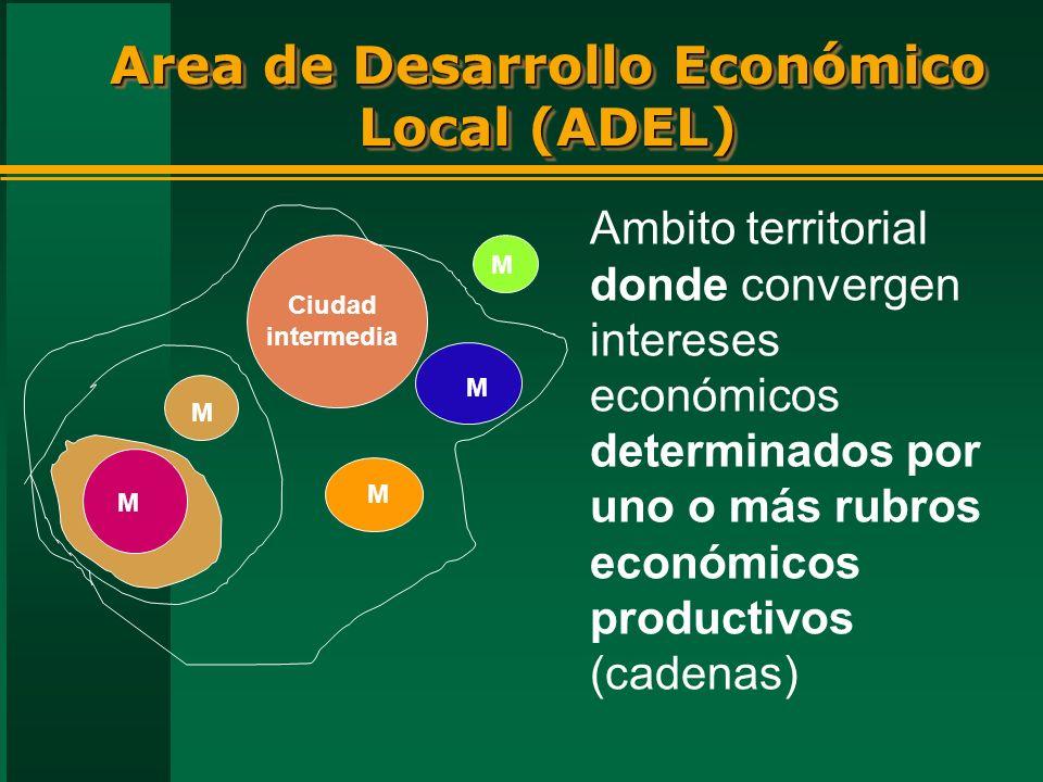 Area de Desarrollo Económico Local (ADEL) Ciudad intermedia M M M M M Ambito territorial donde convergen intereses económicos determinados por uno o más rubros económicos productivos (cadenas)