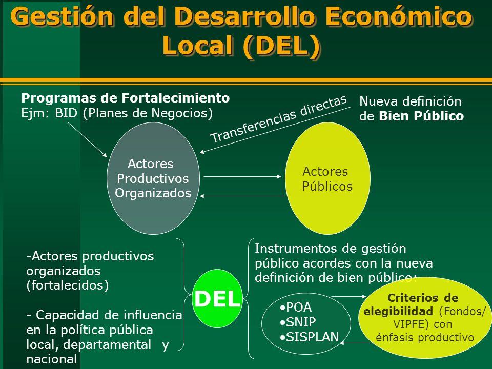 Gestión del Desarrollo Económico Local (DEL) Actores Productivos Organizados Actores Públicos -Actores productivos organizados (fortalecidos) - Capacidad de influencia en la política pública local, departamental y nacional Programas de Fortalecimiento Ejm: BID (Planes de Negocios) Instrumentos de gestión público acordes con la nueva definición de bien público: POA SNIP SISPLAN Nueva definición de Bien Público Transferencias directas Criterios de elegibilidad (Fondos/ VIPFE) con énfasis productivo DEL