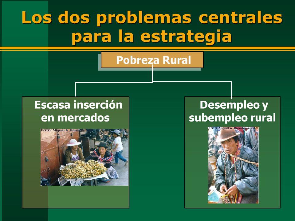 Desempleo y subempleo rural Los dos problemas centrales para la estrategia Pobreza Rural Escasa inserción en mercados