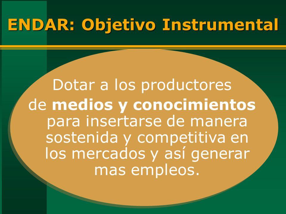ENDAR: Objetivo Instrumental Dotar a los productores de medios y conocimientos para insertarse de manera sostenida y competitiva en los mercados y así generar mas empleos.