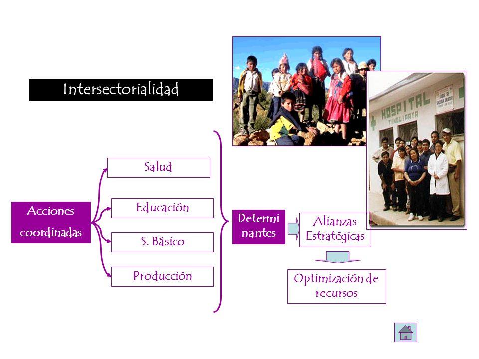 Acciones coordinadas Salud S. Básico Educación Determi nantes Alianzas Estratégicas Producción Optimización de recursos Intersectorialidad