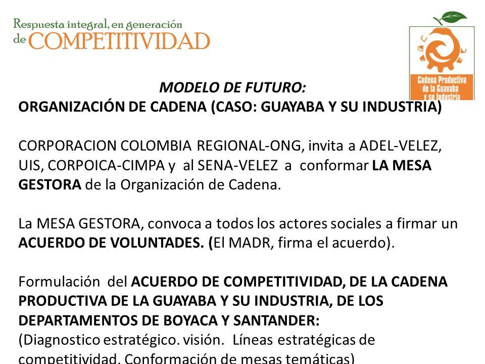 MODELO DE FUTURO: ORGANIZACIÓN DE CADENA (CASO: GUAYABA Y SU INDUSTRIA) CORPORACION COLOMBIA REGIONAL-ONG, invita a ADEL-VELEZ, UIS, CORPOICA-CIMPA y