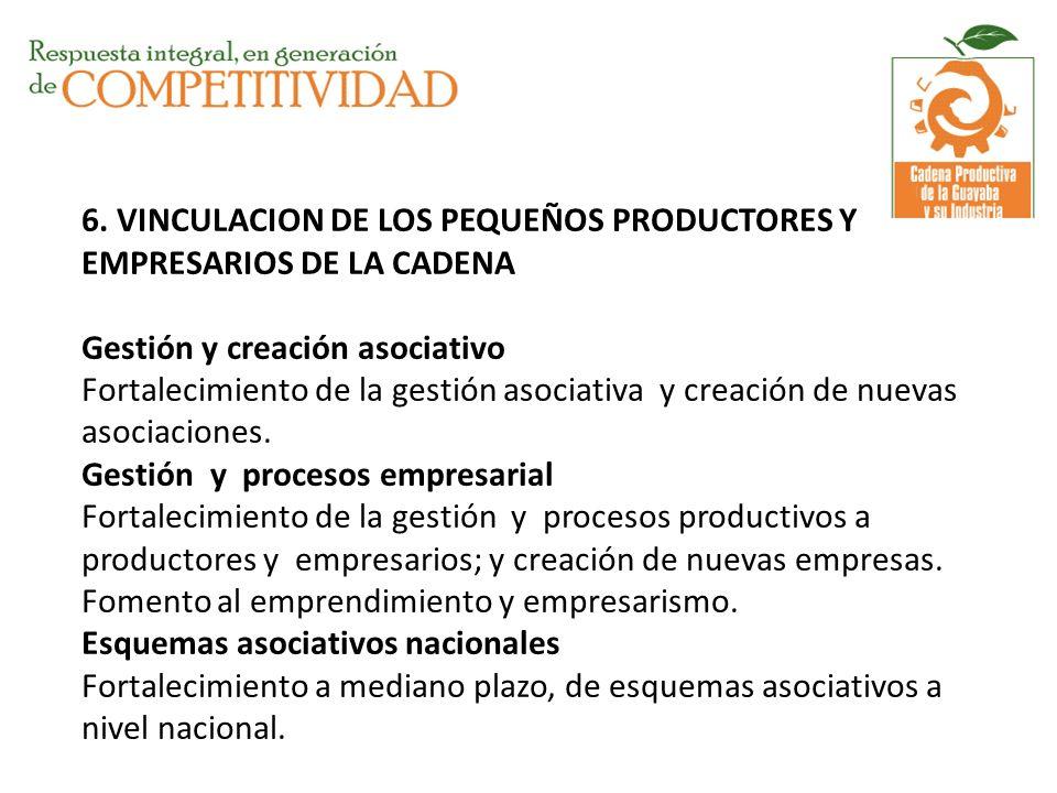 6. VINCULACION DE LOS PEQUEÑOS PRODUCTORES Y EMPRESARIOS DE LA CADENA Gestión y creación asociativo Fortalecimiento de la gestión asociativa y creació