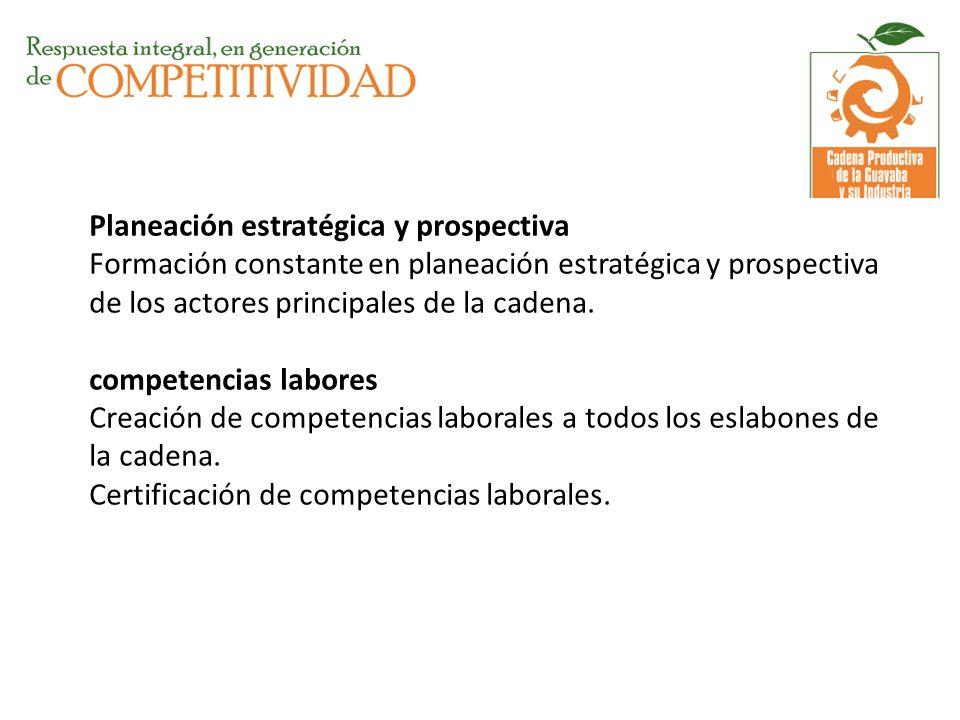 Planeación estratégica y prospectiva Formación constante en planeación estratégica y prospectiva de los actores principales de la cadena. competencias