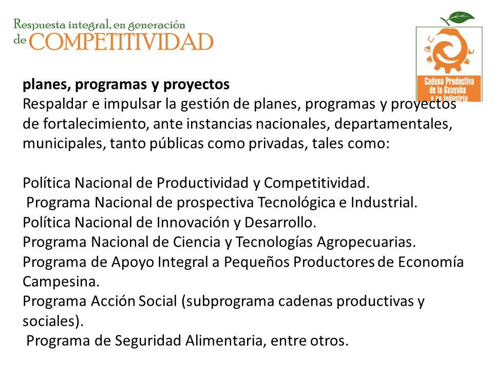 planes, programas y proyectos Respaldar e impulsar la gestión de planes, programas y proyectos de fortalecimiento, ante instancias nacionales, departa