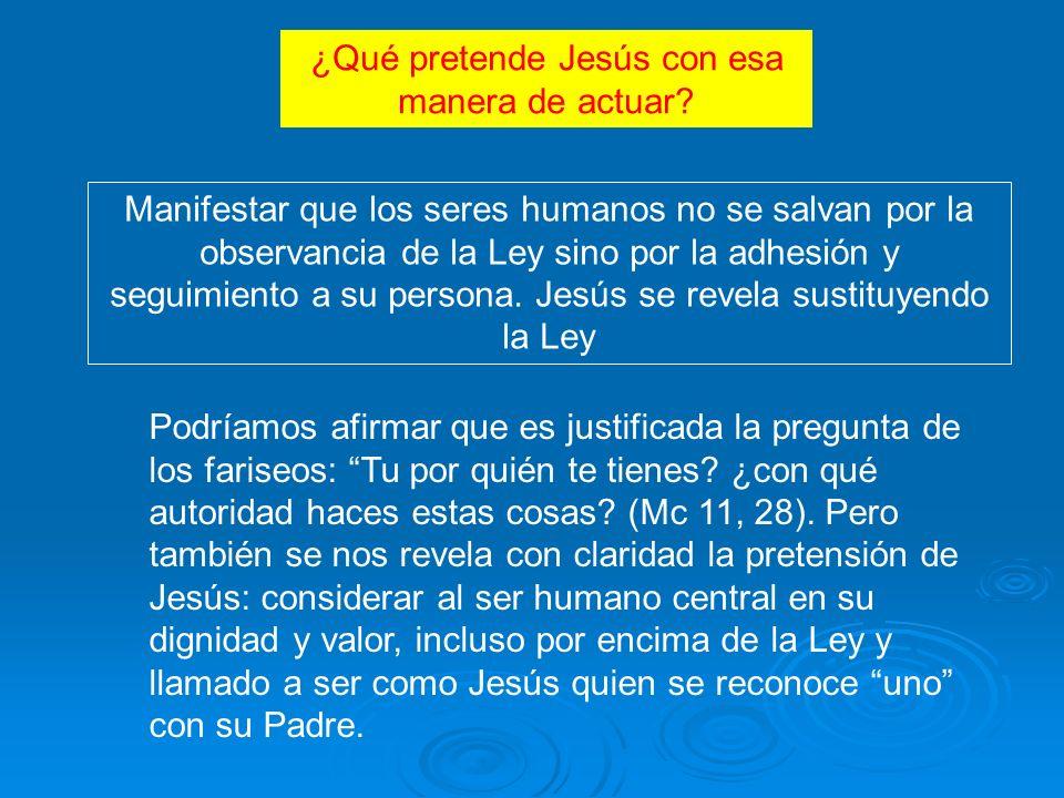 Manifestar que los seres humanos no se salvan por la observancia de la Ley sino por la adhesión y seguimiento a su persona.