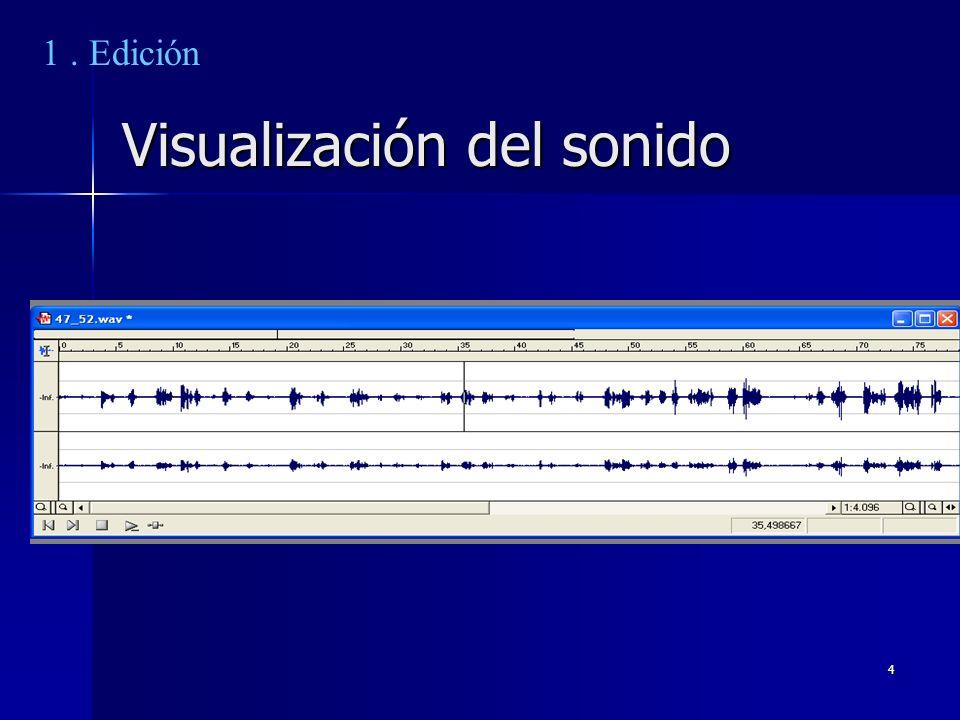 4 Visualización del sonido 1. Edición