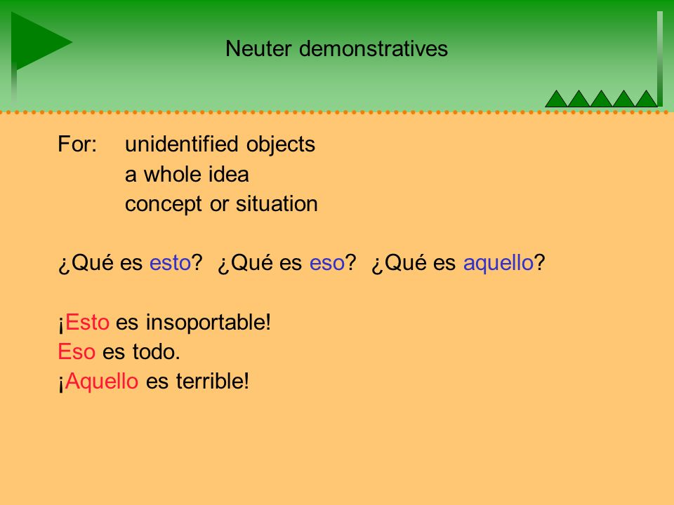 Neuter demonstratives For: unidentified objects a whole idea concept or situation ¿Qué es esto.