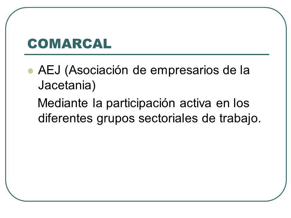 COMARCAL AEJ (Asociación de empresarios de la Jacetania) Mediante la participación activa en los diferentes grupos sectoriales de trabajo.