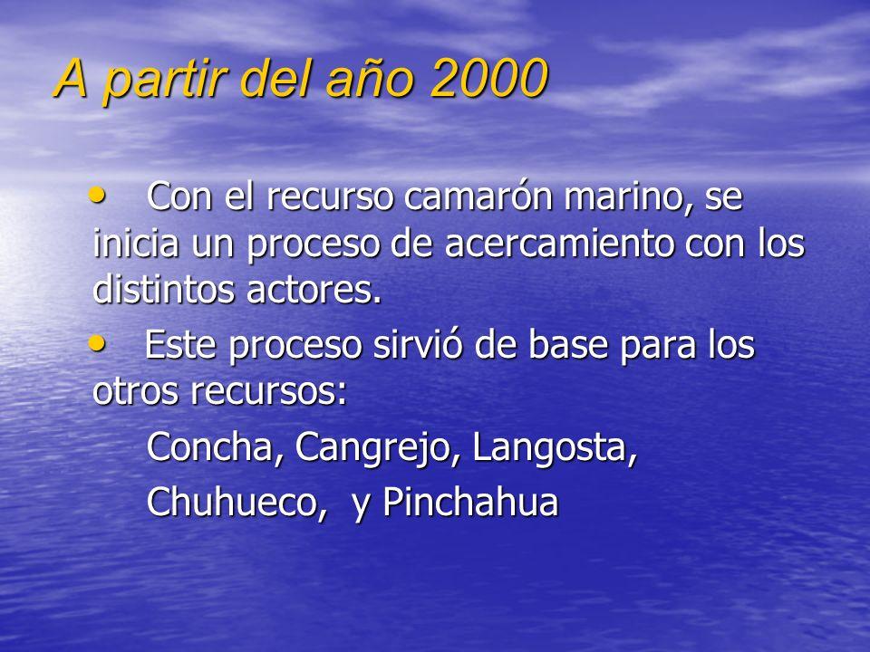 A partir del año 2000 Con el recurso camarón marino, se inicia un proceso de acercamiento con los distintos actores.