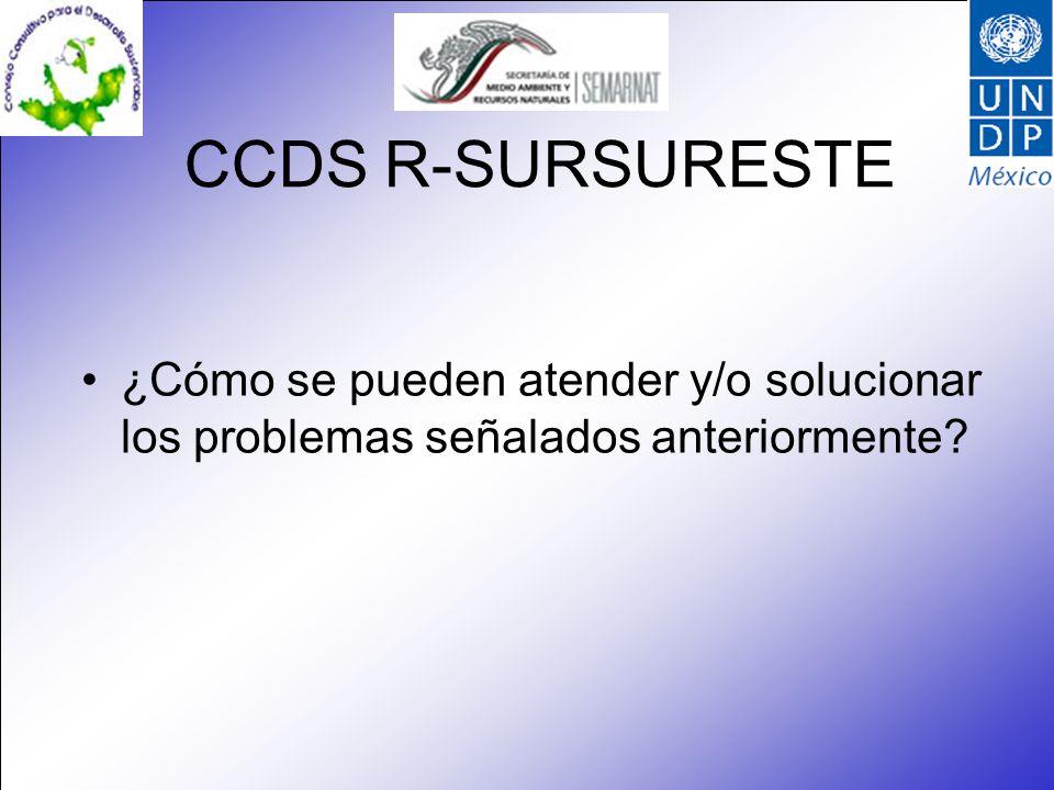 CCDS R-SURSURESTE ¿Cómo se pueden atender y/o solucionar los problemas señalados anteriormente?