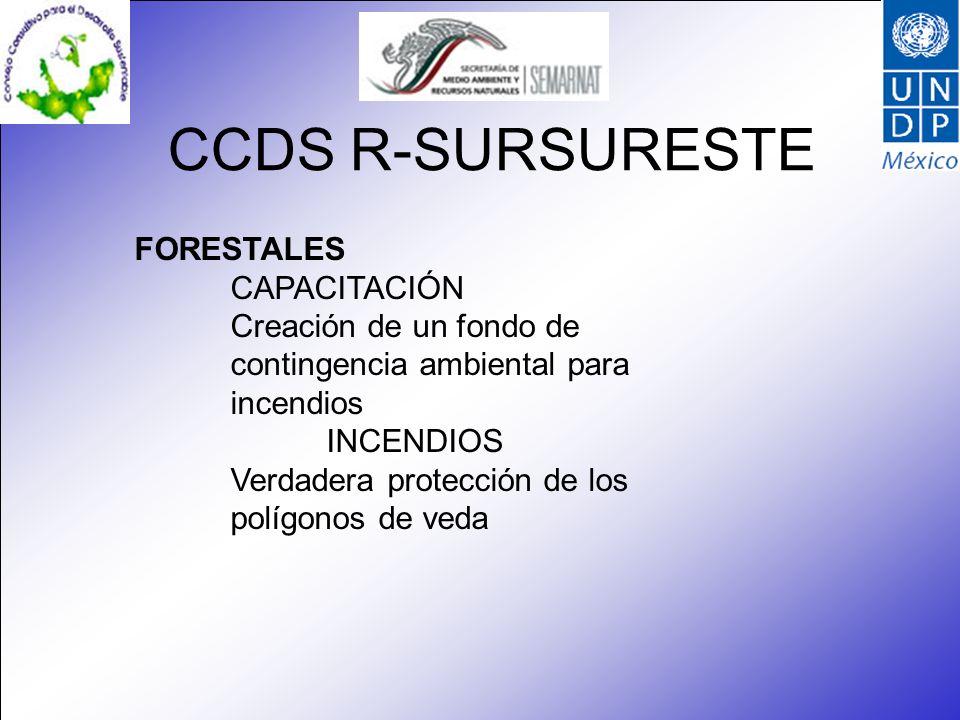 CCDS R-SURSURESTE FORESTALES CAPACITACIÓN Creación de un fondo de contingencia ambiental para incendios INCENDIOS Verdadera protección de los polígonos de veda