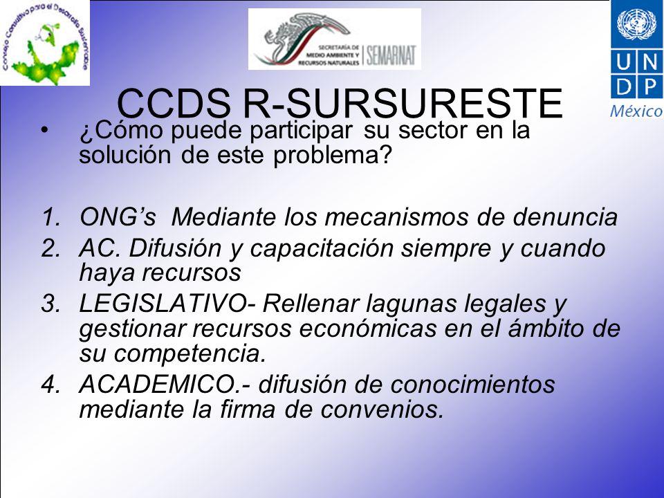 CCDS R-SURSURESTE ¿Cómo puede participar su sector en la solución de este problema? 1.ONGs Mediante los mecanismos de denuncia 2.AC. Difusión y capaci