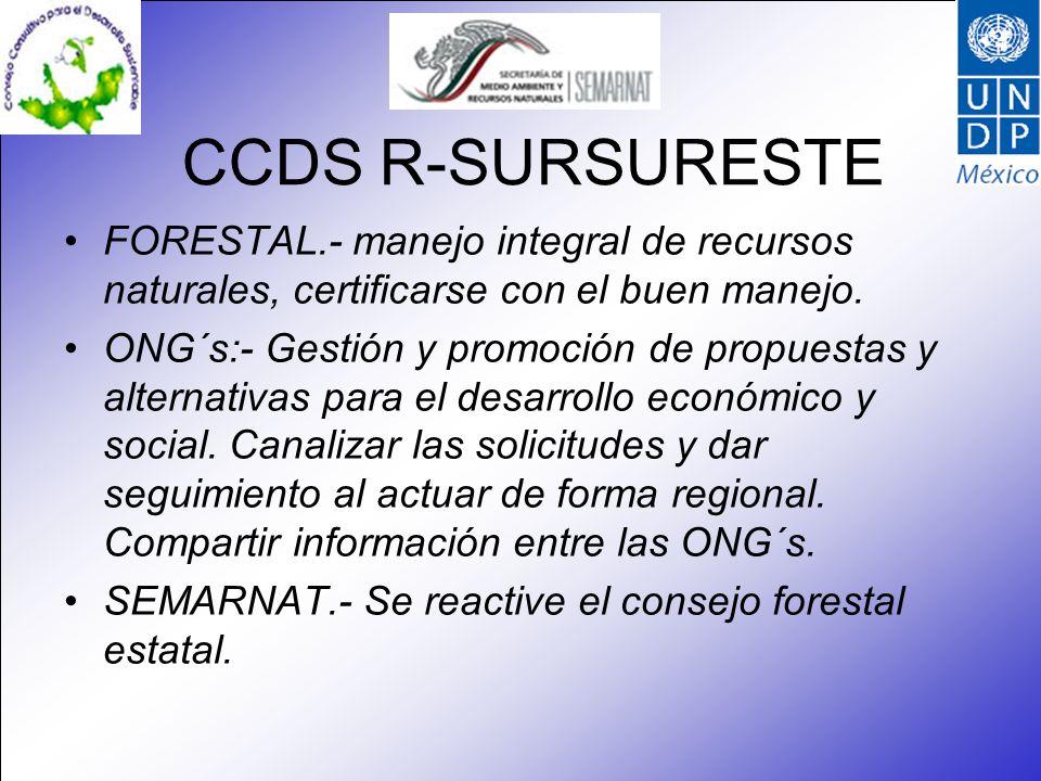 CCDS R-SURSURESTE FORESTAL.- manejo integral de recursos naturales, certificarse con el buen manejo. ONG´s:- Gestión y promoción de propuestas y alter