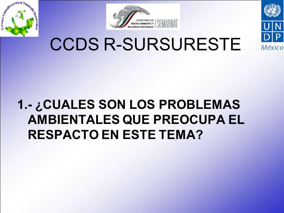 CCDS R-SURSURESTE 1.- ¿CUALES SON LOS PROBLEMAS AMBIENTALES QUE PREOCUPA EL RESPACTO EN ESTE TEMA?