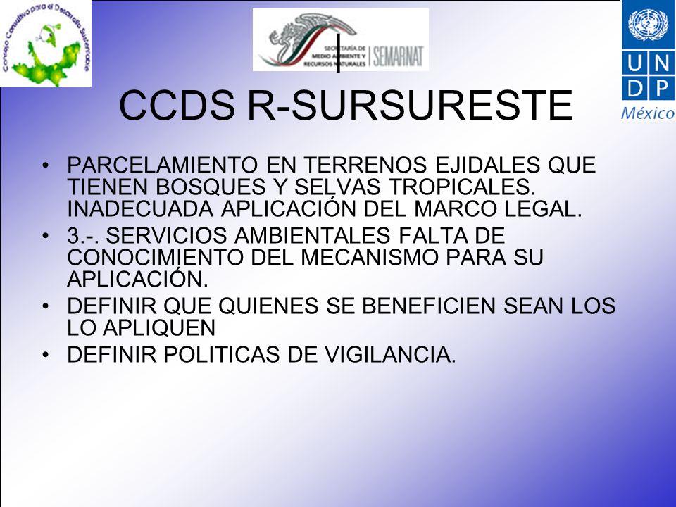 CCDS R-SURSURESTE | PARCELAMIENTO EN TERRENOS EJIDALES QUE TIENEN BOSQUES Y SELVAS TROPICALES. INADECUADA APLICACIÓN DEL MARCO LEGAL. 3.-. SERVICIOS A