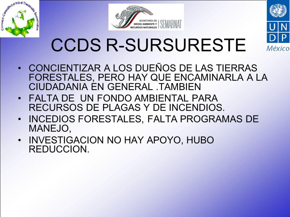 CCDS R-SURSURESTE CONCIENTIZAR A LOS DUEÑOS DE LAS TIERRAS FORESTALES, PERO HAY QUE ENCAMINARLA A LA CIUDADANIA EN GENERAL.TAMBIEN FALTA DE UN FONDO AMBIENTAL PARA RECURSOS DE PLAGAS Y DE INCENDIOS.