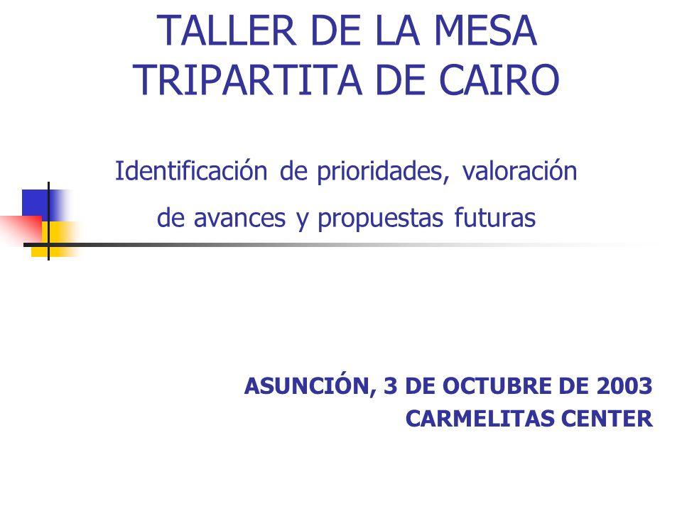 TALLER DE LA MESA TRIPARTITA DE CAIRO Identificación de prioridades, valoración de avances y propuestas futuras ASUNCIÓN, 3 DE OCTUBRE DE 2003 CARMELI
