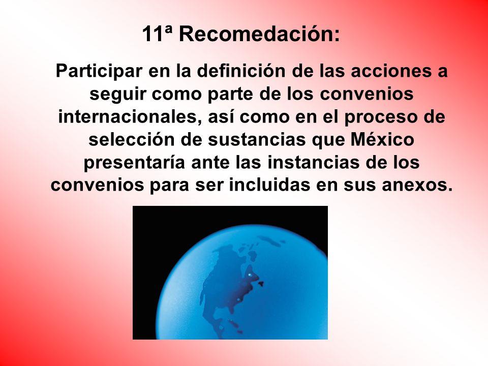 Participar en la definición de las acciones a seguir como parte de los convenios internacionales, así como en el proceso de selección de sustancias que México presentaría ante las instancias de los convenios para ser incluidas en sus anexos.