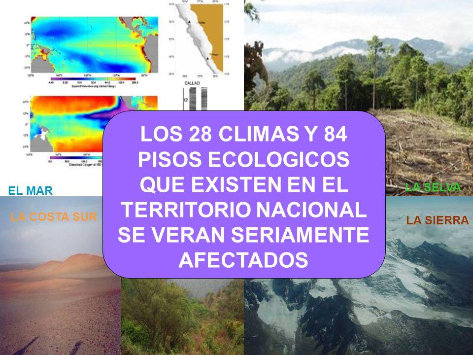 LA COSTA PERU MUSSO - ABUGATTAS LA SELVA LA SIERRA EL MAR LA COSTA SURLA COSTA NORTE LOS 28 CLIMAS Y 84 PISOS ECOLOGICOS QUE EXISTEN EN EL TERRITORIO
