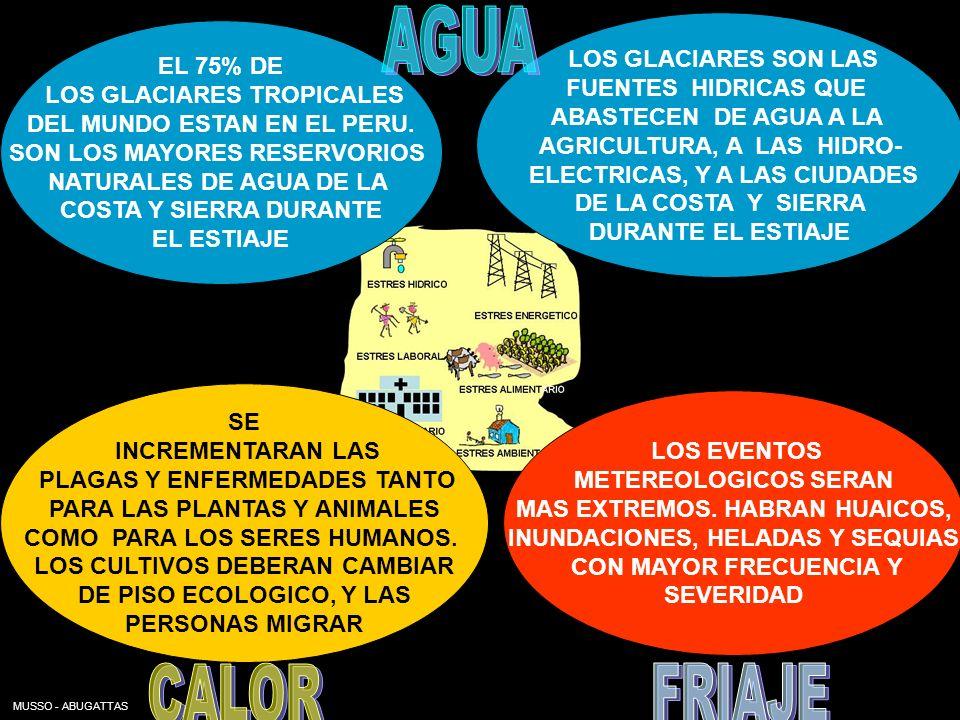 MUSSO - ABUGATTAS EL 75% DE LOS GLACIARES TROPICALES DEL MUNDO ESTAN EN EL PERU. SON LOS MAYORES RESERVORIOS NATURALES DE AGUA DE LA COSTA Y SIERRA DU
