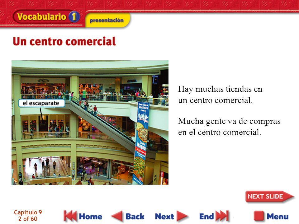Capítulo 9 2 of 60 Hay muchas tiendas en un centro comercial. Mucha gente va de compras en el centro comercial.