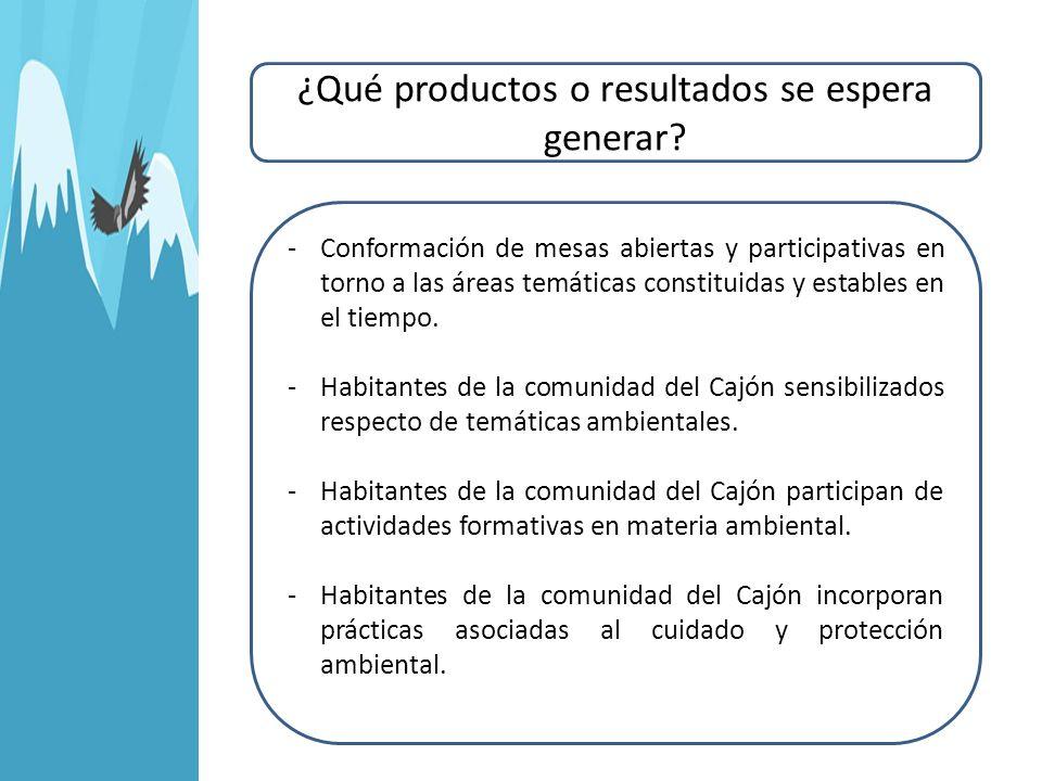 ¿Qué productos o resultados se espera generar? -Conformación de mesas abiertas y participativas en torno a las áreas temáticas constituidas y estables